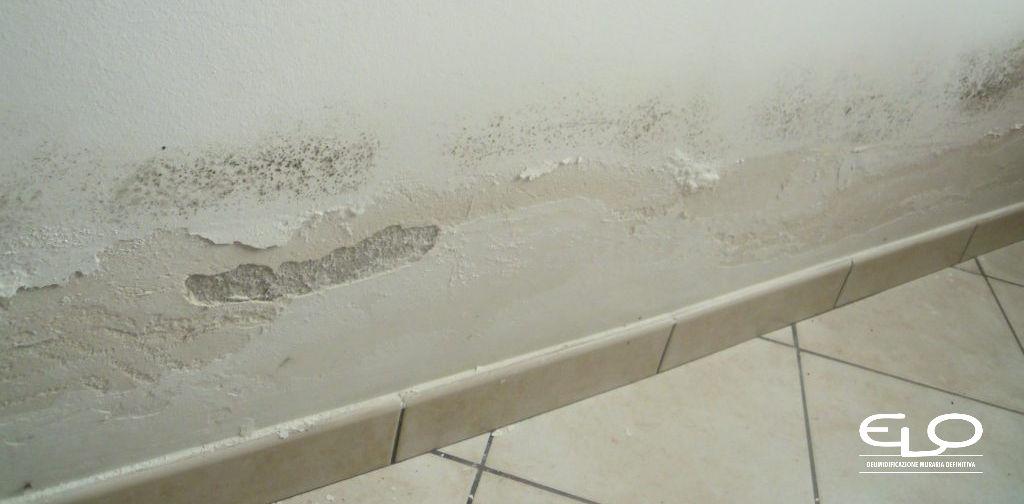 Umidità nelle case nuove e nelle nuove costruzioni - Umidità da risalita