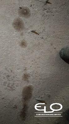 Infiltrazioni d'acqua in setti cemento armato3