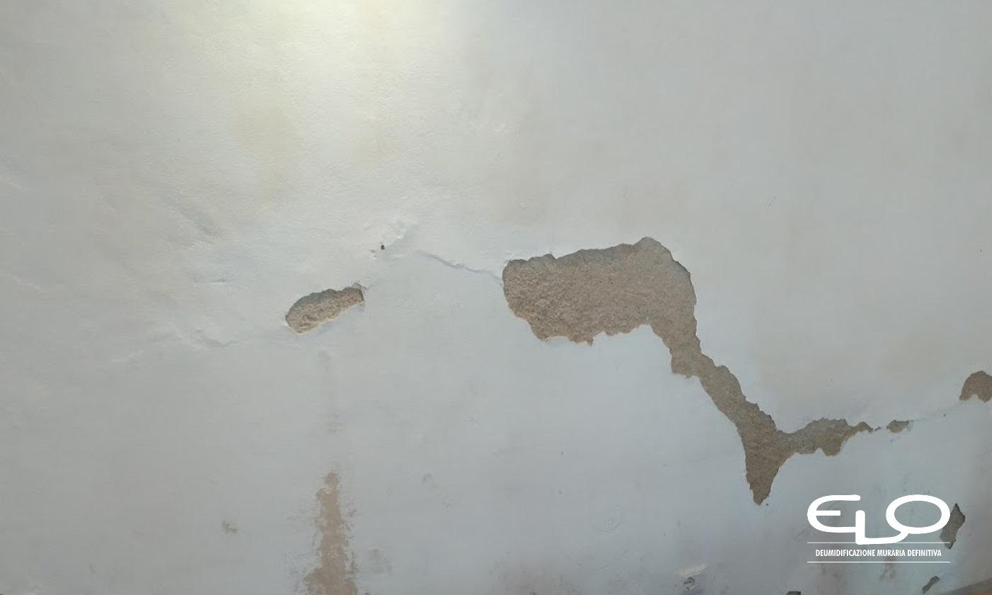 Cristallizzazione o efflorescenze presenza con presenza dei sali sui muri - distaccamento intonaco