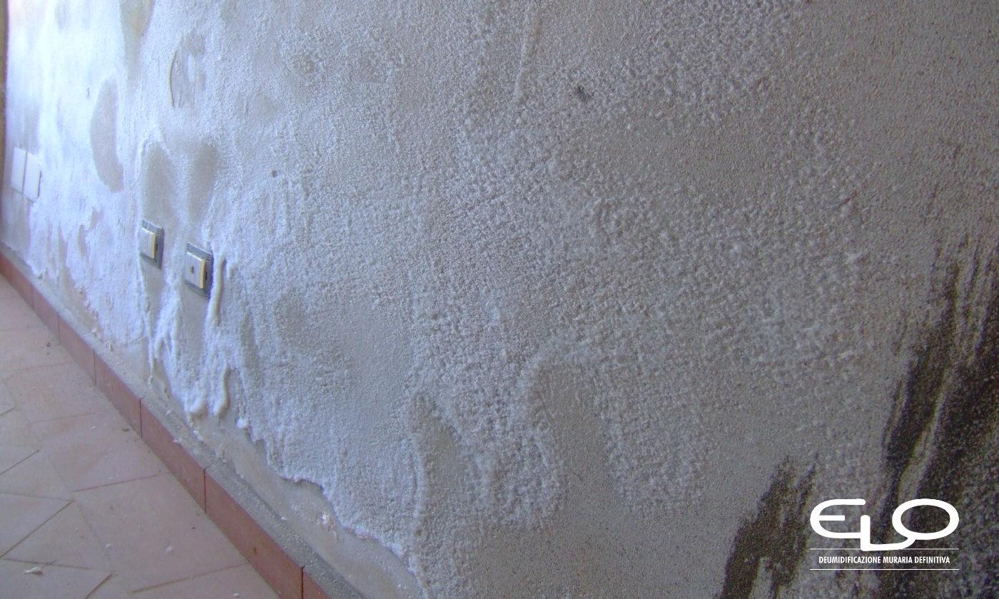 Cristalizzazione o efflorescenze presenza dei sali sui muri - efflorescenza sparsa