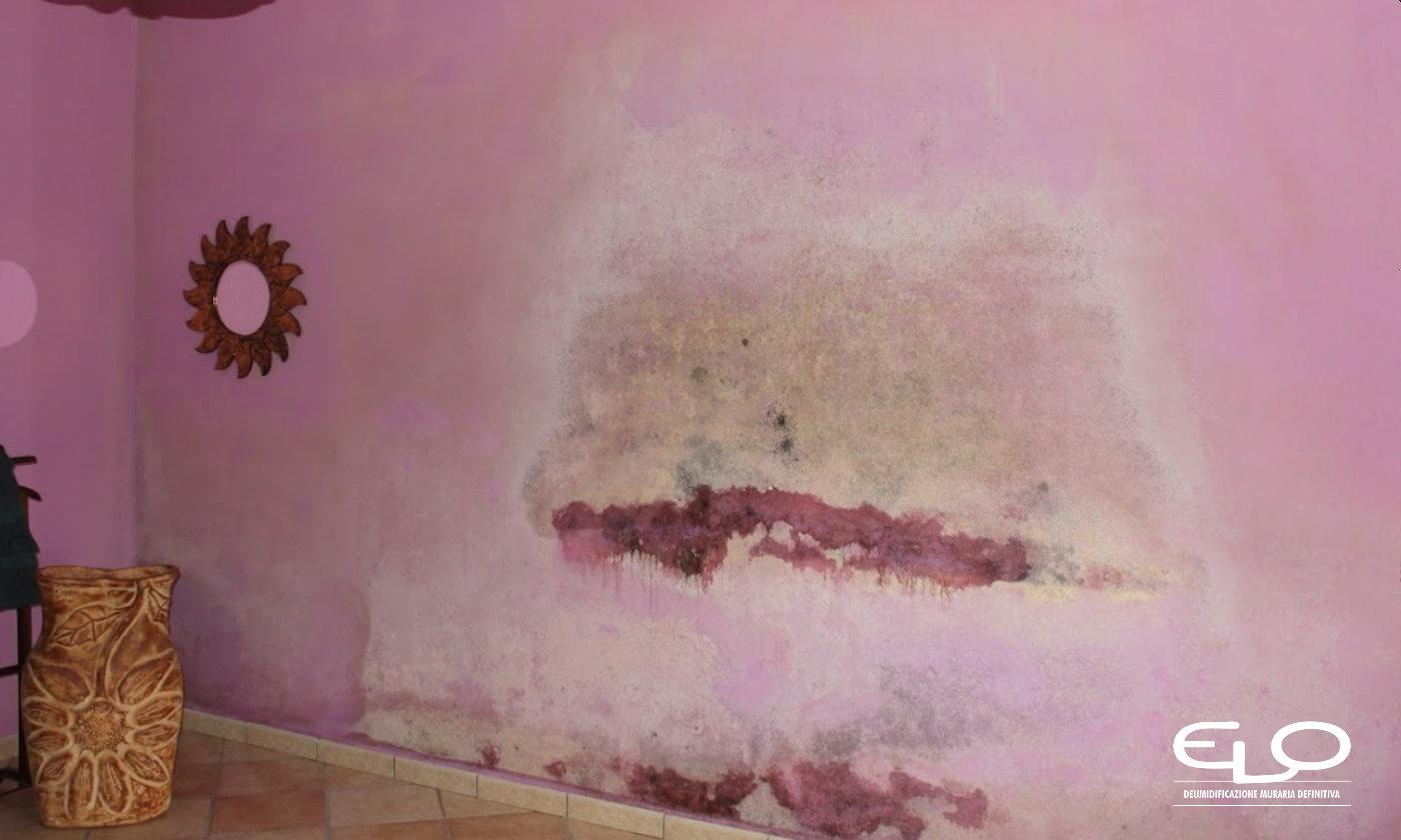 Tasso di umidità ideale in casa