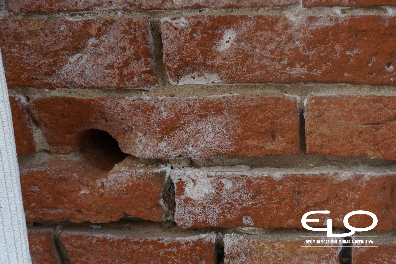 Trattamenti antisalini dopo il risanamento dei muri - Sale sui mattoni